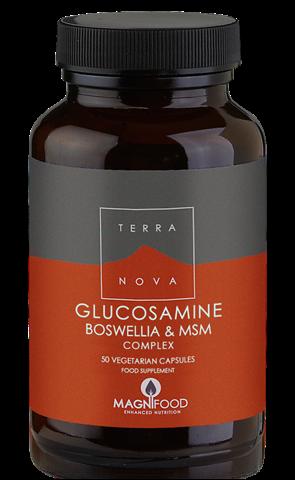 Terranova Glucosamine- Boswellia & ΜSM Complex - Joint Support 50 Κάψουλες
