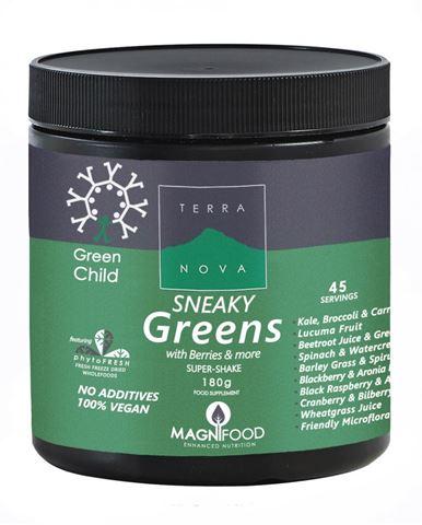 Terranova Green Child Sneaky Greens Super-shake 180gr