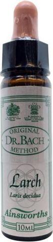 AM Health Larch  - Ανθοίαμα Bach από την Ainsworths 10ml