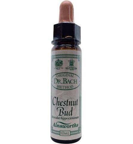AM Health Chestnut Bud - Ανθοίαμα Bach από την Ainsworths 10ml