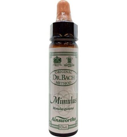 AM Health Mimulus  - Ανθοίαμα Bach από την Ainsworths 10ml