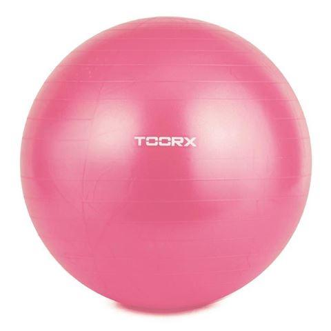 Μπάλα Γυμναστικής 55cm TOORX 10-432-063 Ροζ
