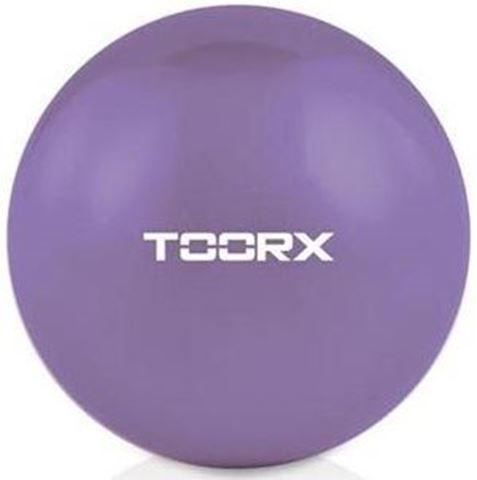 Toorx Toning ball Μπάλα Ενδυνάμωσης Μωβ 10-432-116