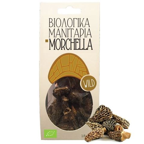 Greenbay Μανιτάρια Morchella (Μορχέλλες) 25gr